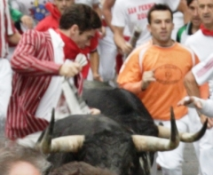 Xander running between two bulls in 2011 (Photo courtesy of Photo Auma)