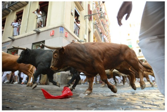 The bulls that day (Photo courtesy of www.sanfermin.com)